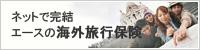 AIUの海外旅行保険